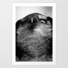 Owl series no.5 Art Print
