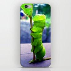 Stretch iPhone & iPod Skin