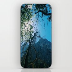 ZMT iPhone & iPod Skin