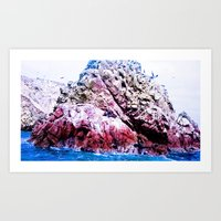 Beautiful Marine Life. Art Print