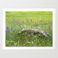 Jewels of Wyoming Art Print