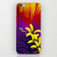 Tiny Garden iPhone & iPod Skin