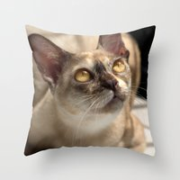 Study of a Cat Throw Pillow
