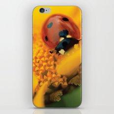 Ladybug macro still life  iPhone & iPod Skin
