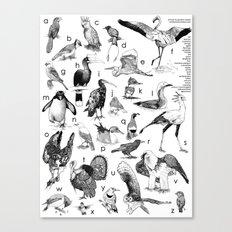Bird Poster Canvas Print