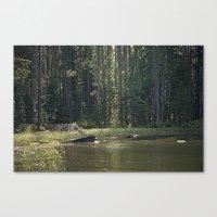 Mountain Pond Canvas Print