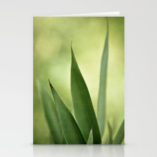 bamboo abstract Stationery Card