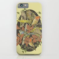Robins And Warblers iPhone 6 Slim Case