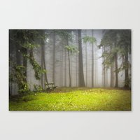 Sacred space Canvas Print