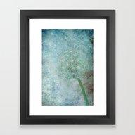 Delicate And Blue  Framed Art Print