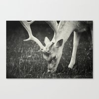 Get some green... Canvas Print