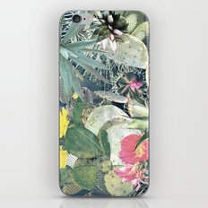 CACTI iPhone & iPod Skin
