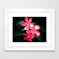 Pink Flowers Revamped Framed Art Print