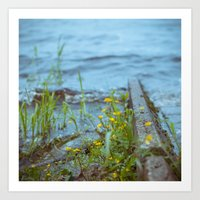 flowers by the waterline Art Print