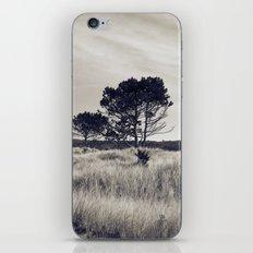 Juniper Tree iPhone & iPod Skin