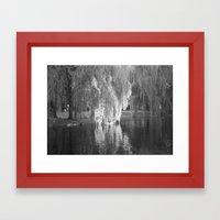 Willows  Framed Art Print