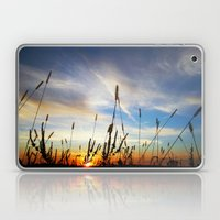 Sunshine Down Laptop & iPad Skin