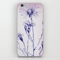 Symbol Of Love iPhone & iPod Skin