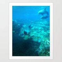 Under SeaWorld Art Print