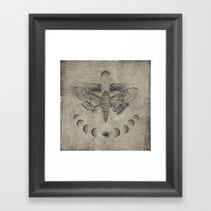 Circaea Framed Art Print