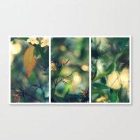 Daydream Believer - Triptych Canvas Print