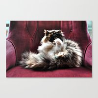 Don't be so serious  Canvas Print