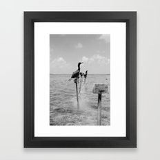 41 Framed Art Print