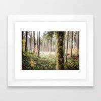 In The Woods I Framed Art Print