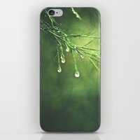 Relic of a Rainy Day iPhone & iPod Skin