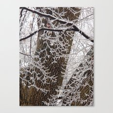 Encrusted Branches Canvas Print
