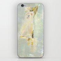 Dunk iPhone & iPod Skin