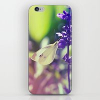 Pieris Rapae iPhone & iPod Skin