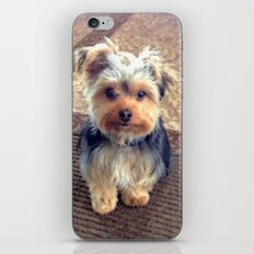 You Are My Family iPhone & iPod Skin