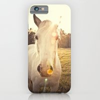 iPhone Cases featuring Sunlit Horse by Erin Johnson