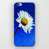 White Daisy  iPhone & iPod Skin