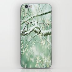 bright branches iPhone & iPod Skin
