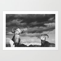 Rams | Fig. 01 | Odd Ram… Art Print