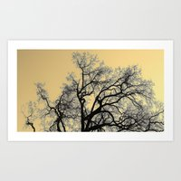 Exhaling Wood Art Print