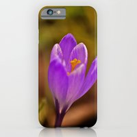 Spring Flower iPhone 6 Slim Case