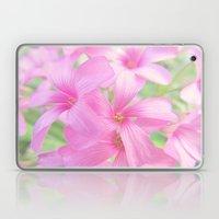 Coral Pink Petals Laptop & iPad Skin