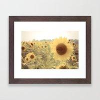 Sunflower Dreams Framed Art Print