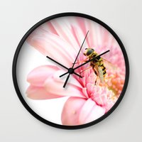Sweet Late Summer Wall Clock