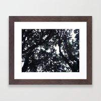 Under the trees Framed Art Print