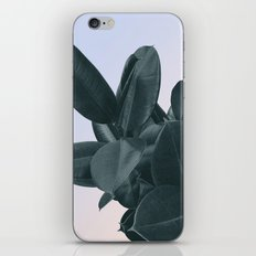 Someone new iPhone & iPod Skin