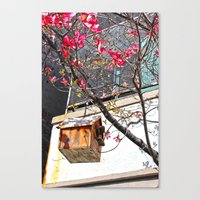 bird house 2 Canvas Print