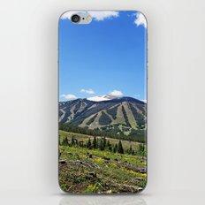 Winter Park iPhone & iPod Skin
