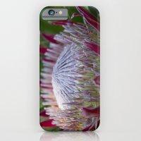 King Protea Island Flowe… iPhone 6 Slim Case