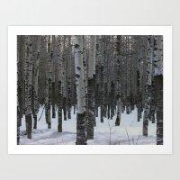 Whispering Aspen Art Print