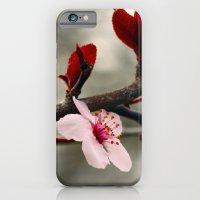 Solitude iPhone 6 Slim Case