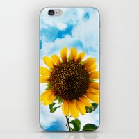 Sunny Sunflower iPhone & iPod Skin
